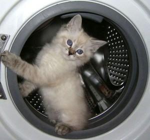 Подключение стиральной машины к электричеству в квартире или частном доме.